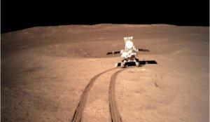 На Луне проросли первые земные растения