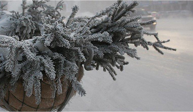 в Челябинской области похолодает до минус 30