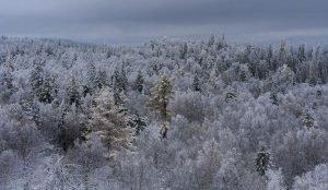 На южном Урале за сутки похолодает до -42