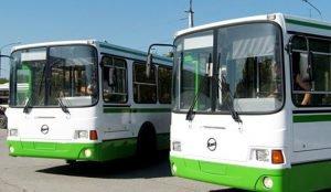 В Челябинске начинают ходить садовые автобусы