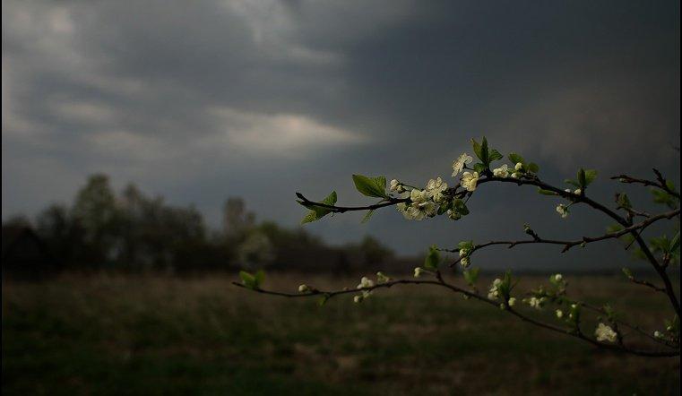 Грозы, град и сильный ветер. Погода в Челябинской области резко испортится