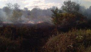 Пожар рядом с поселком Прибрежный