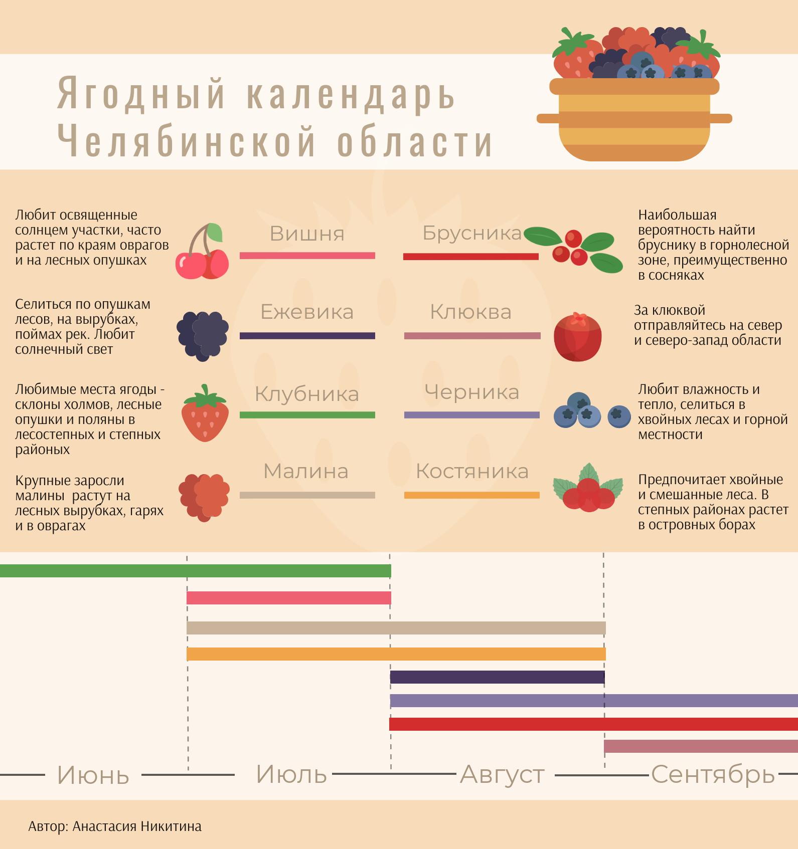 Сезон открыт. Рассказываем о самых ягодных местах Челябинской области