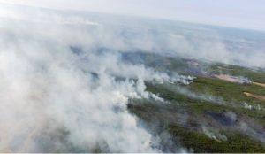 Смог в Челябинскую область принесли пожары из Сибири