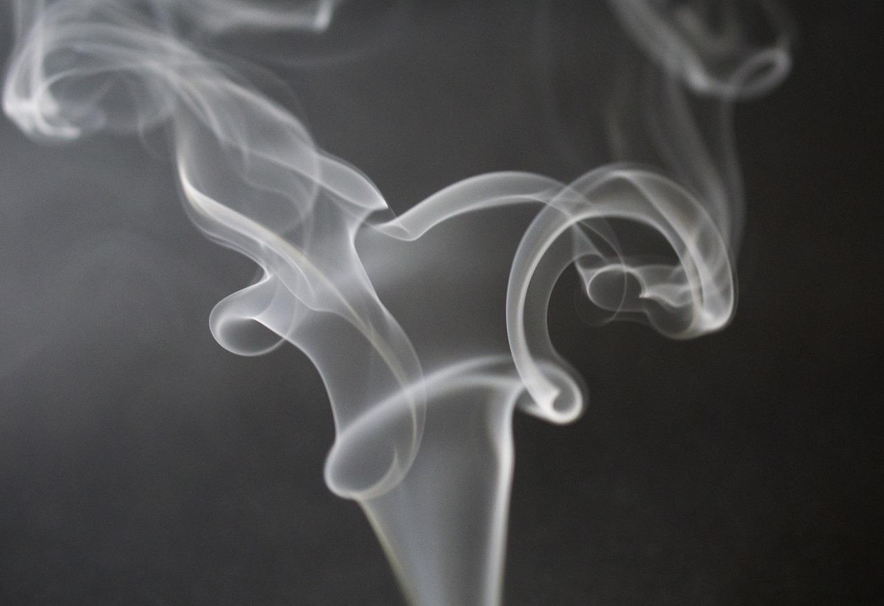 Госдума предложила сделать курилки в аэропортах платными