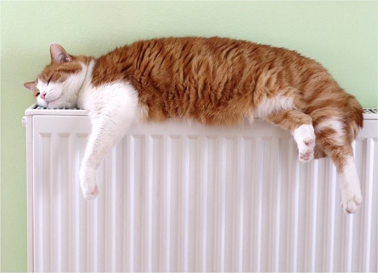 Тепло круглый год. В Госдуме предложили включать отопление летом