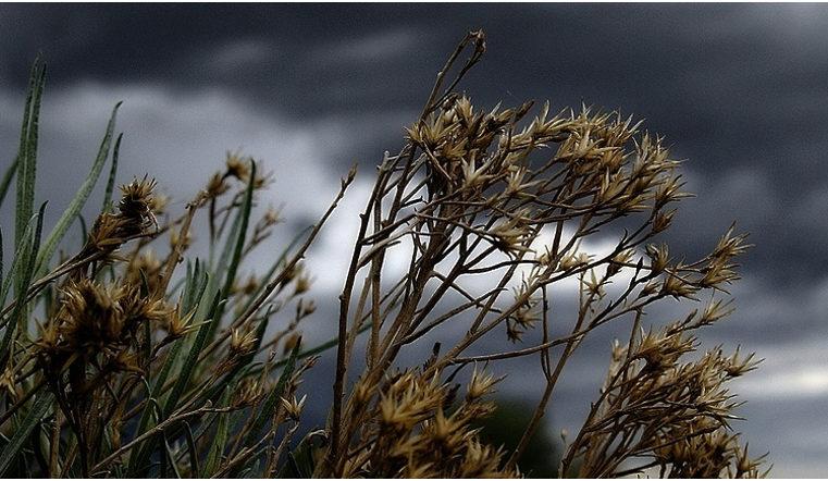 Погода шалит. Южный Урал во власти ветра, дождей и гроз