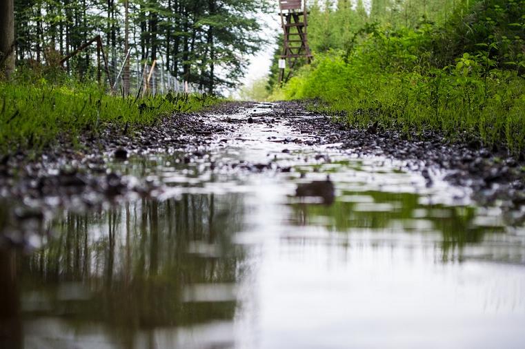На Южный Урал возвращается летнее тепло