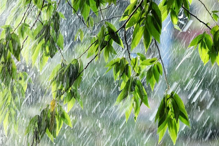 Зарядят дожди. Погода в Челябинской области испортится