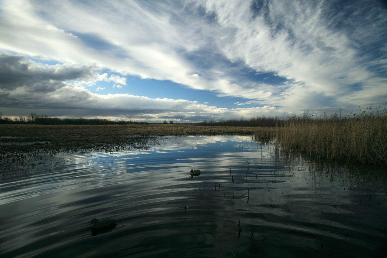 сладкое озеро челябинская область фото того, при
