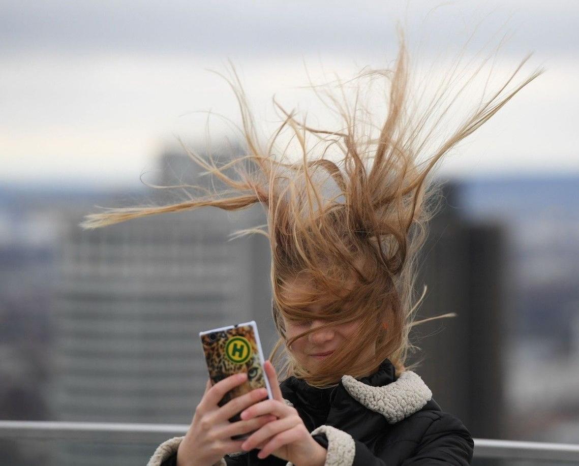прикольные картинки про сильный ветер
