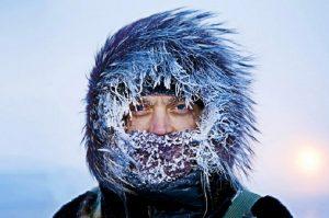 Холод собачий. От чего содрогнется Челябинская область