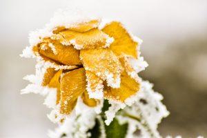 Ледяные качели. Северный циклон внезапно испортит погоду на Урале