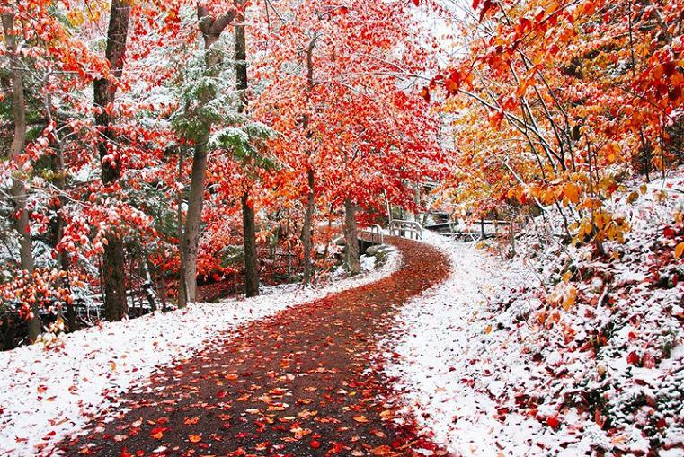 неделю, картинки с первым снегом красивые рапунцель скачать