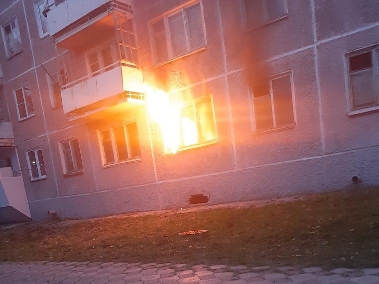 Сгорела собака. На Южном Урале вспыхнула квартира