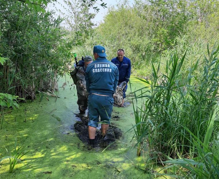 Гиблое место. На Южном Урале болото засосало пенсионера по пояс