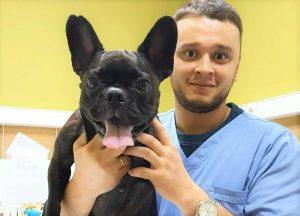 Черный ветеринар. Доктору из Челябинска пригрозили тюрьмой за спасение животных