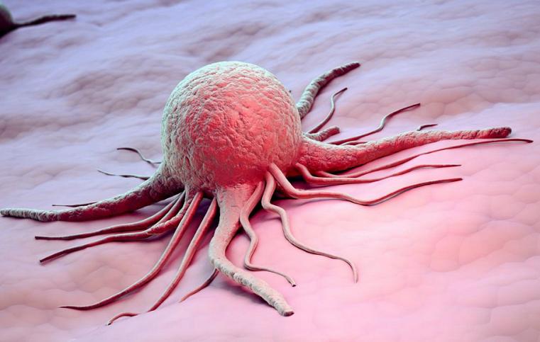 Ученые выяснили, как не дать раковым клеткам распространиться в организме