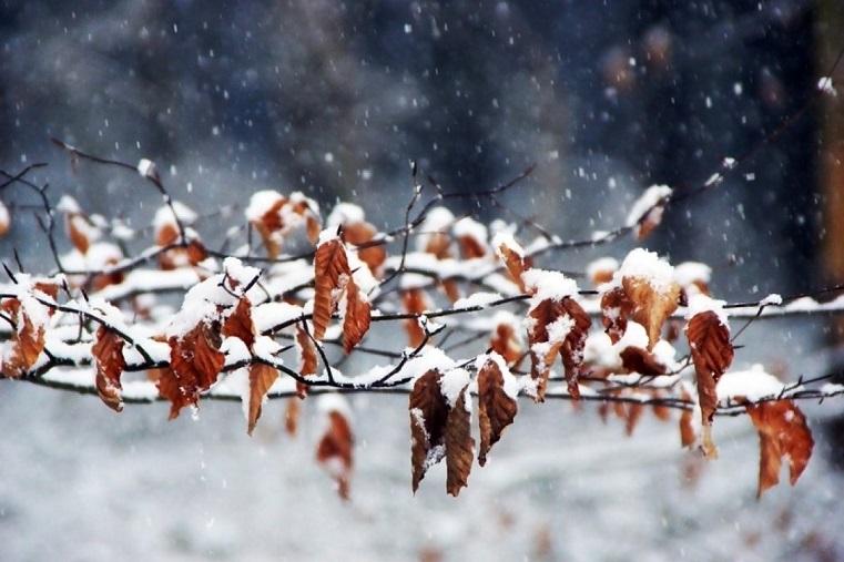 Зима подкралась. Снегопады и похолодание идут в Челябинскую область
