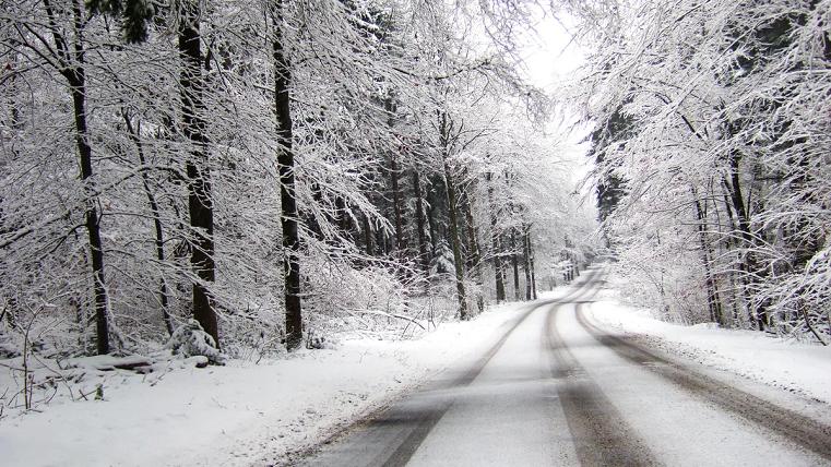 Пасмурно и снежно. Синоптики рассказали о погоде на выходные