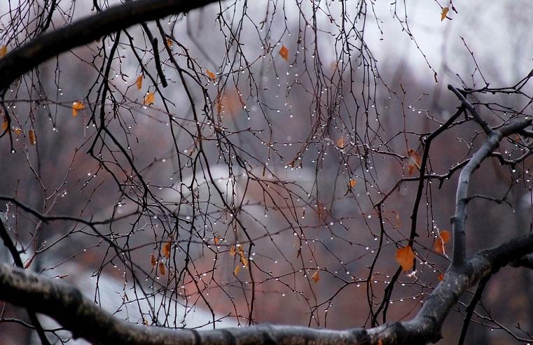 Перепады температуры. Синоптики рассказали о погоде в Челябинской области