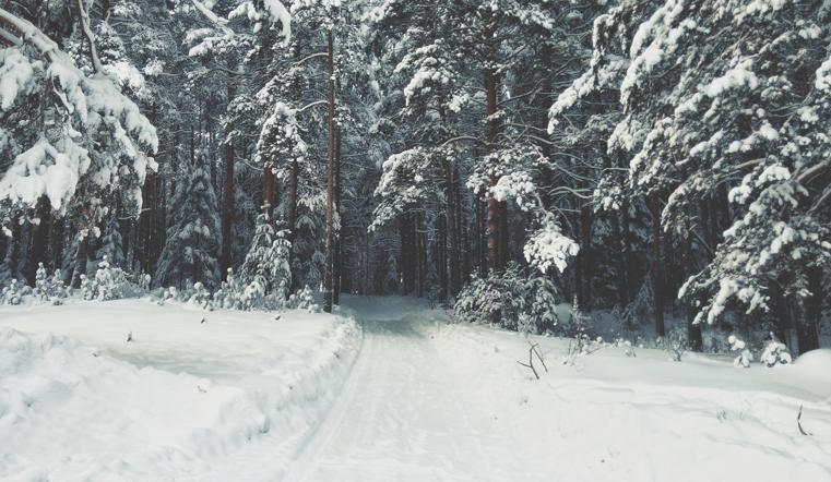 Время снеговиков и ангелов. Синоптики рассказали про осадки на Южном Урале