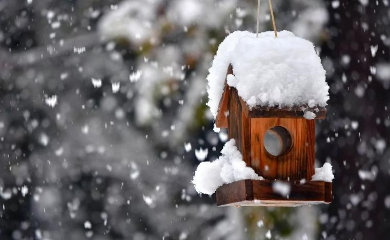 Зима пришла. Первая неделя декабря будет снежной