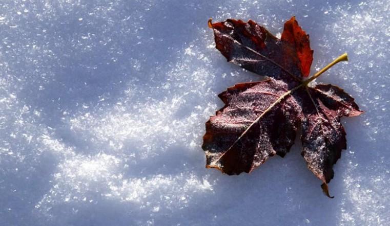 Дождь и снег ожидают в понедельник на Южном Урале