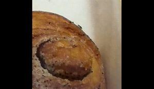 Житель Челябинской области чуть не купил булку с тараканом