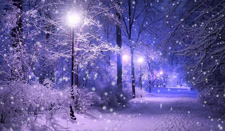 Будет много снега. Синоптики рассказали о погоде в январе