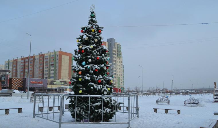 Хоровод вокруг забора. Жители Челябинска возмущены огражденной елкой