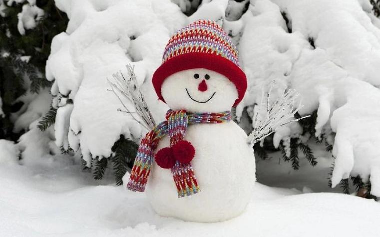 Морозно и снежно. Синоптики рассказали о погоде в Челябинске