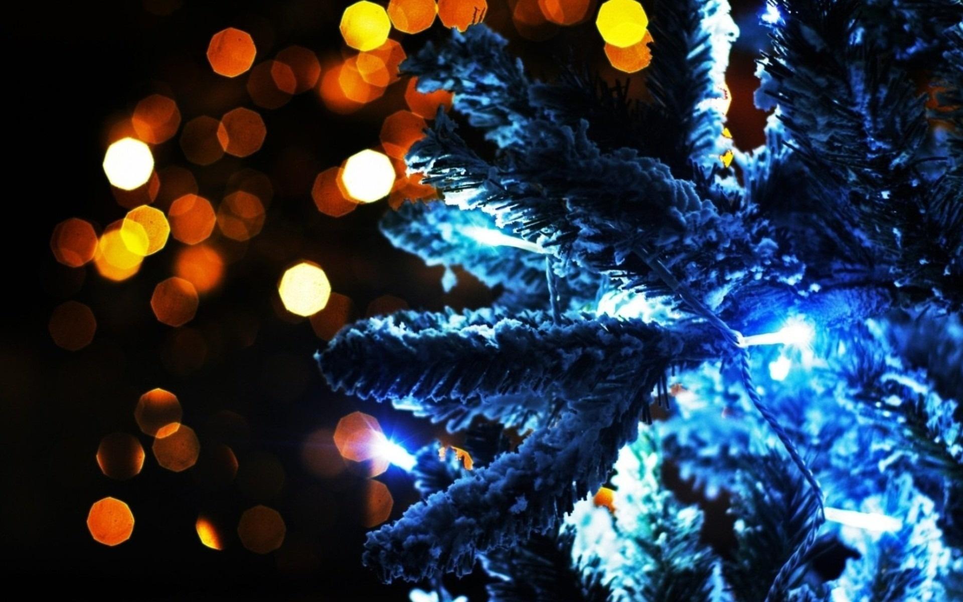 Сказка и подарок за «пятерки». В Челябинске прошла елка главы города