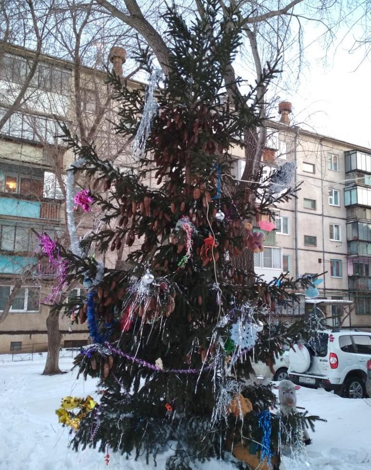 Жители микрорайона в Челябинской области сами установили елку