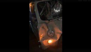 УАЗ сбил лошадь на трассе в Челябинской области