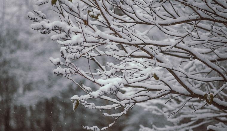 Порывистый ветер и снег. Погода на Южном Урале еще порадует жителей