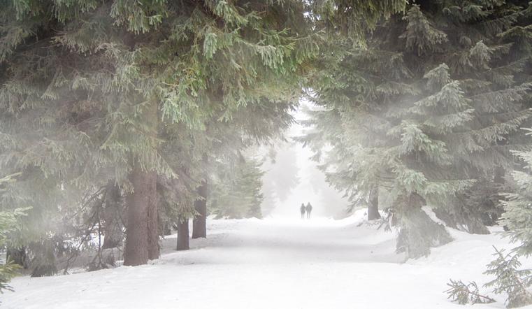 Наконец-то декабрь. Синоптики рассказали о похолодании на Южном Урале