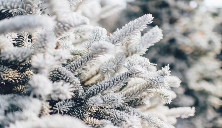 Снег и мороз. Синоптики рассказали о погоде на Южном Урале