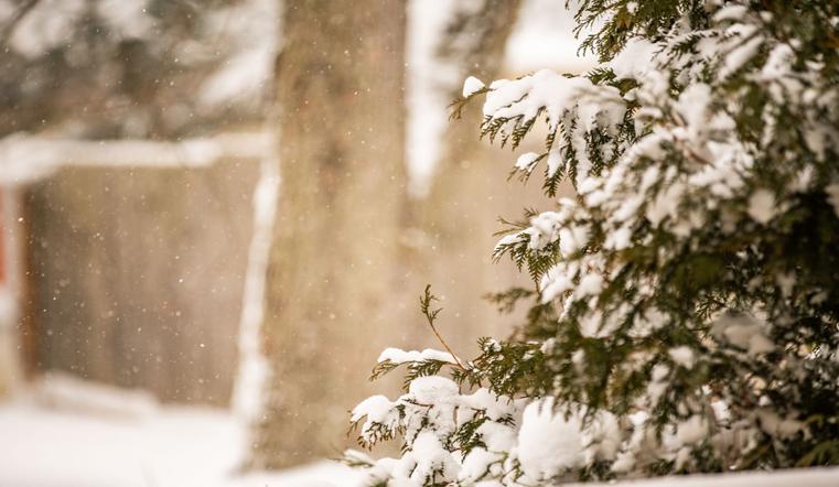 Зимний подарок. Синоптики рассказали о погоде в Челябинской области