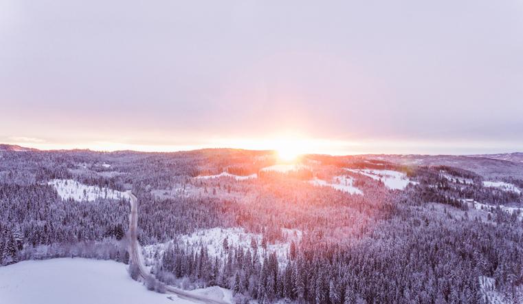 Прогноз на весь год. Синоптики рассказали о погоде на Южном Урале