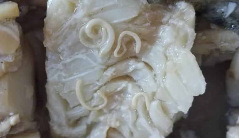Жительница Южного Урала купила консервированных паразитов