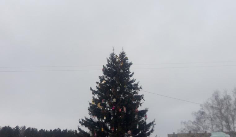 Дерево счастья. Жители Челябинской области случайно заметили 2 макушки у городской елки
