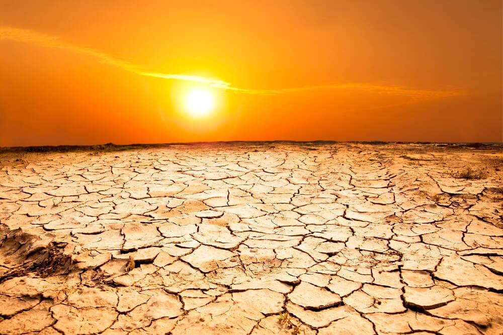 Адская жара. Метеорологи дали прогноз погоды на 4 года