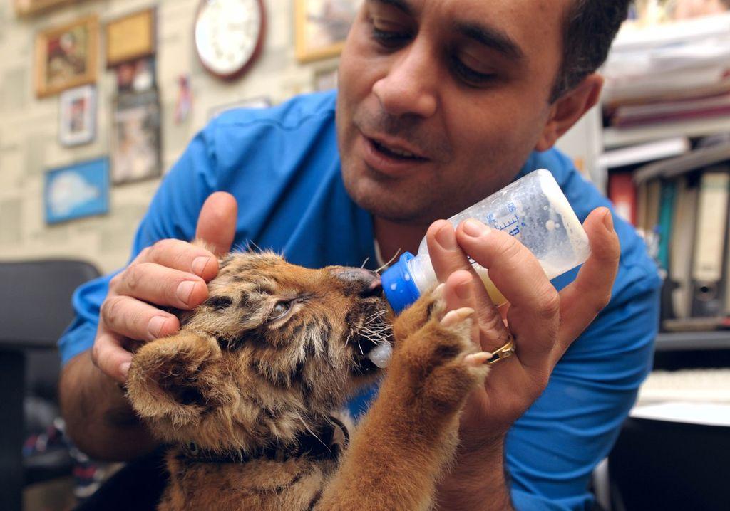 Кем притворились благотворители из Москвы, прежде чем помочь приюту для животных?