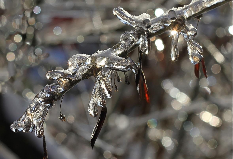 Самый теплый день. Февраль удивит жителей Урала дождем и плюсовой  температурой