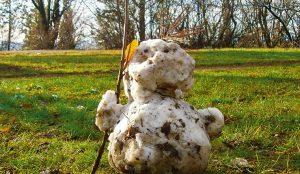 А была ли зима? Синоптики рассказали о раннем приходе весны