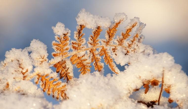 Как долго уральские морозы задержатся в Челябинской области