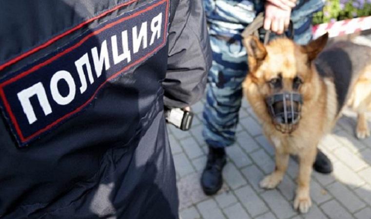 Ищут несколько суток. В Челябинске пропала 12-летняя девочка
