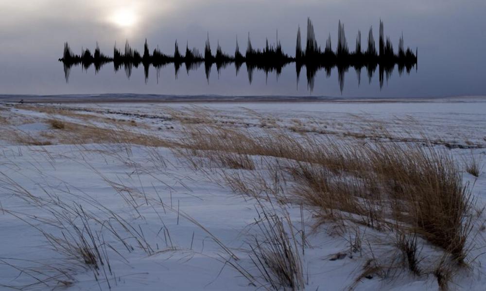 Странное булькание. Выяснилось, кто издает необычные звуки в степях Урала