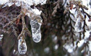 Неприветливый Тарасий. Штормовую погоду с дождем и снегом пообещали синоптики